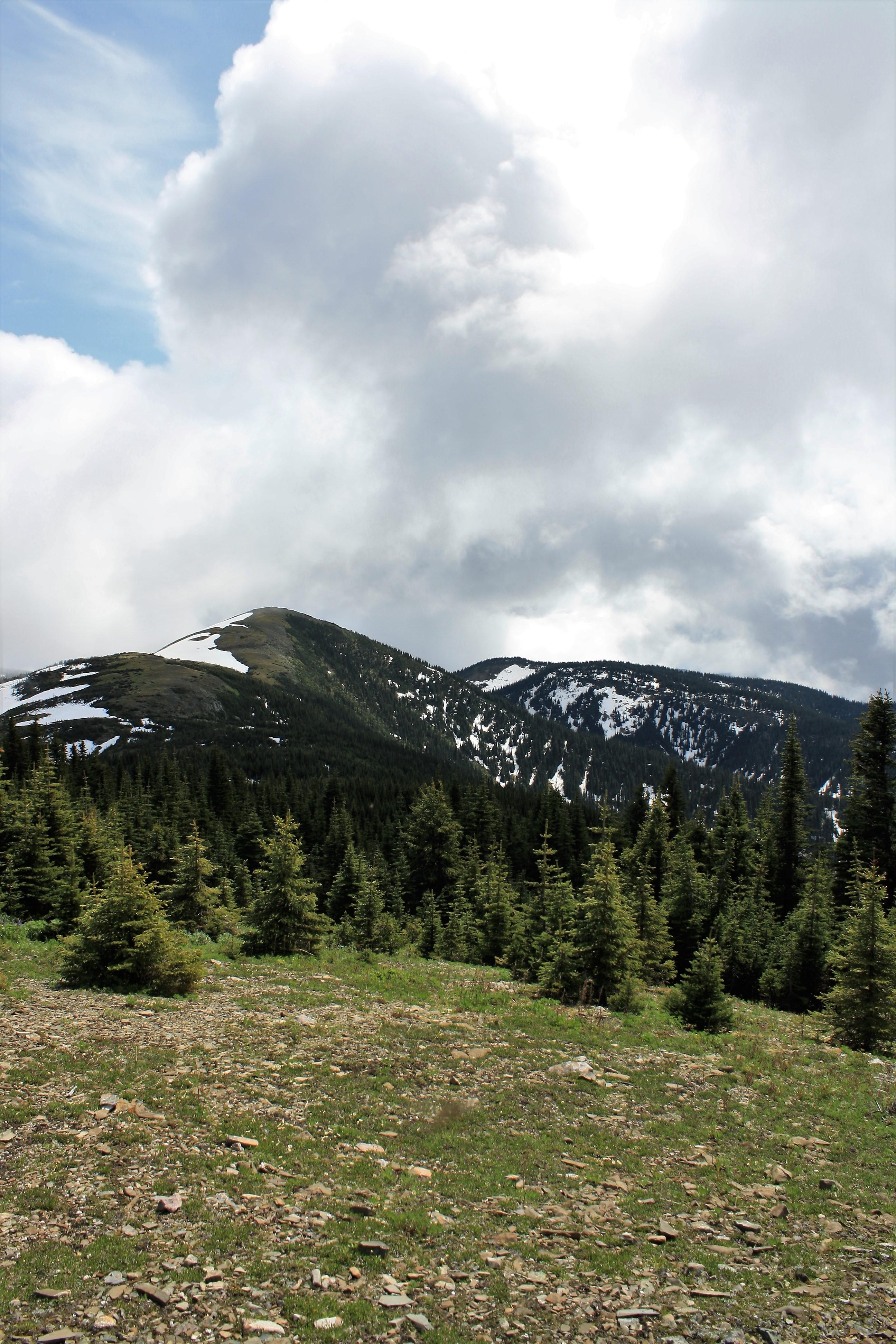 DM_nature_landscape_283