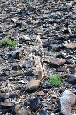 DM_nature_rockstextures_626