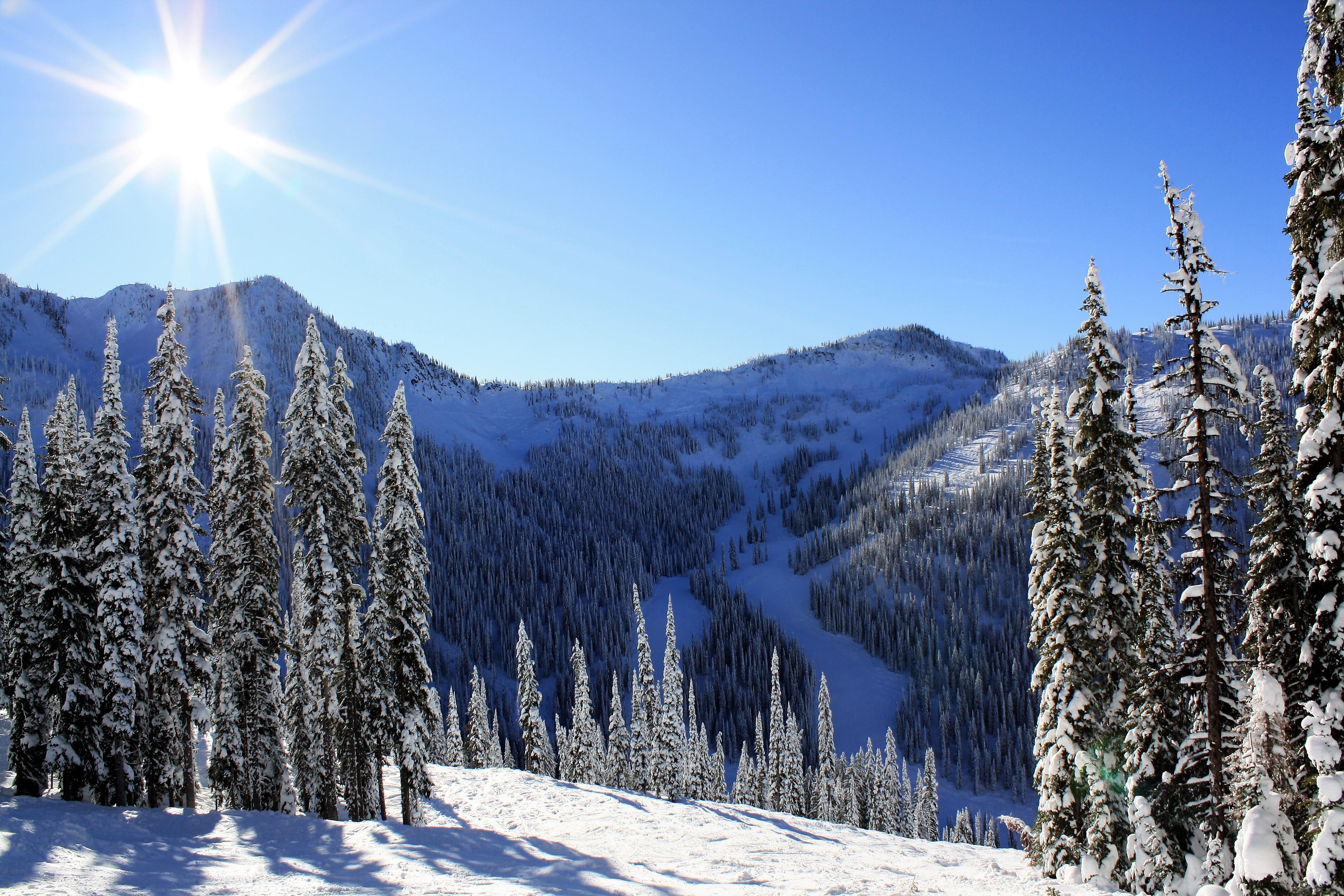 DM_nature_winter_kootenays_7999