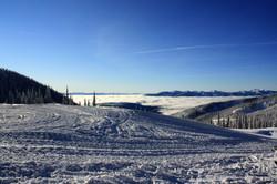 DM_nature_winter_kootenays_1818