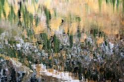DM_nature_landscape_plaidlake_0484