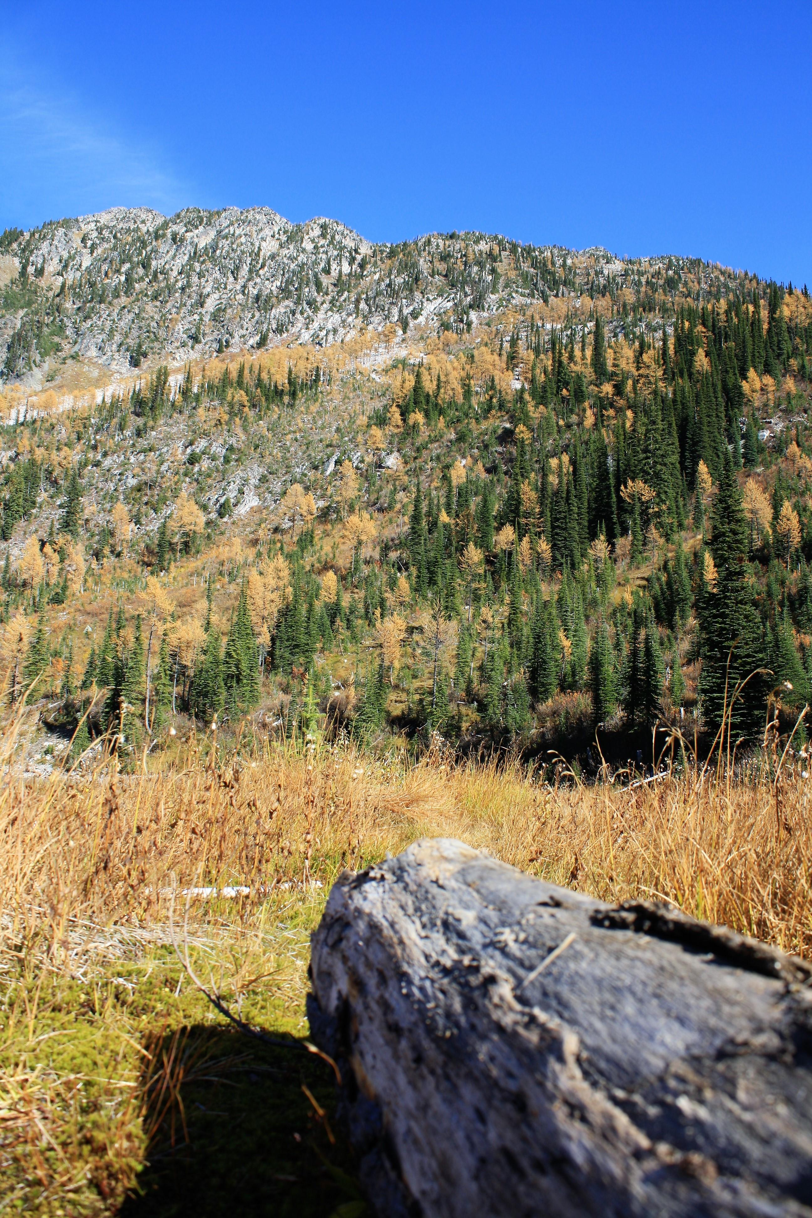 DM_nature_landscape_plaidlake_0457