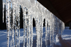 DM_nature_winter_0913