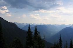 DM_nature_landscape_nelson_874