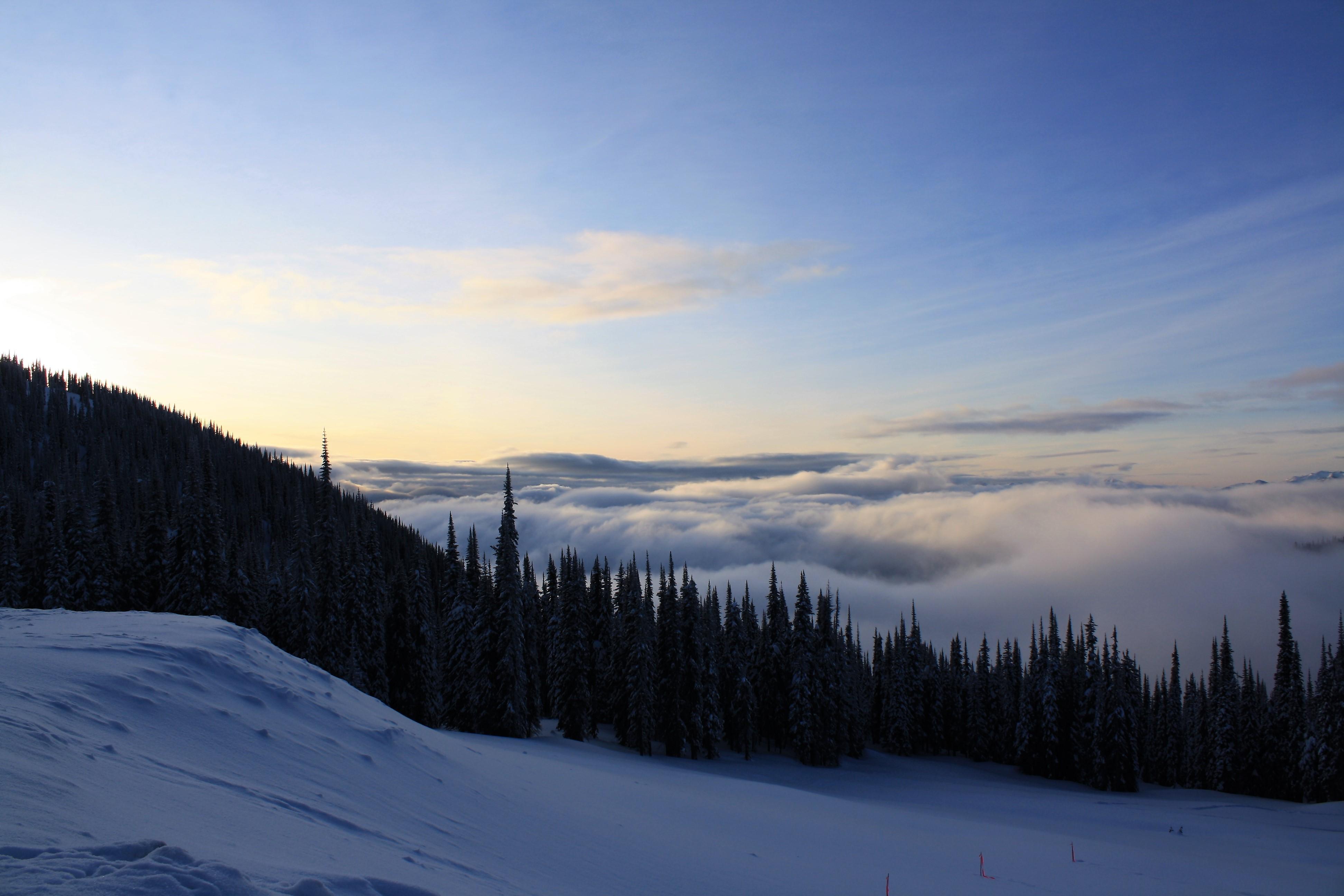 DM_nature_winter_kootenays_1764