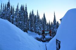 DM_nature_winter_kootenays_1721