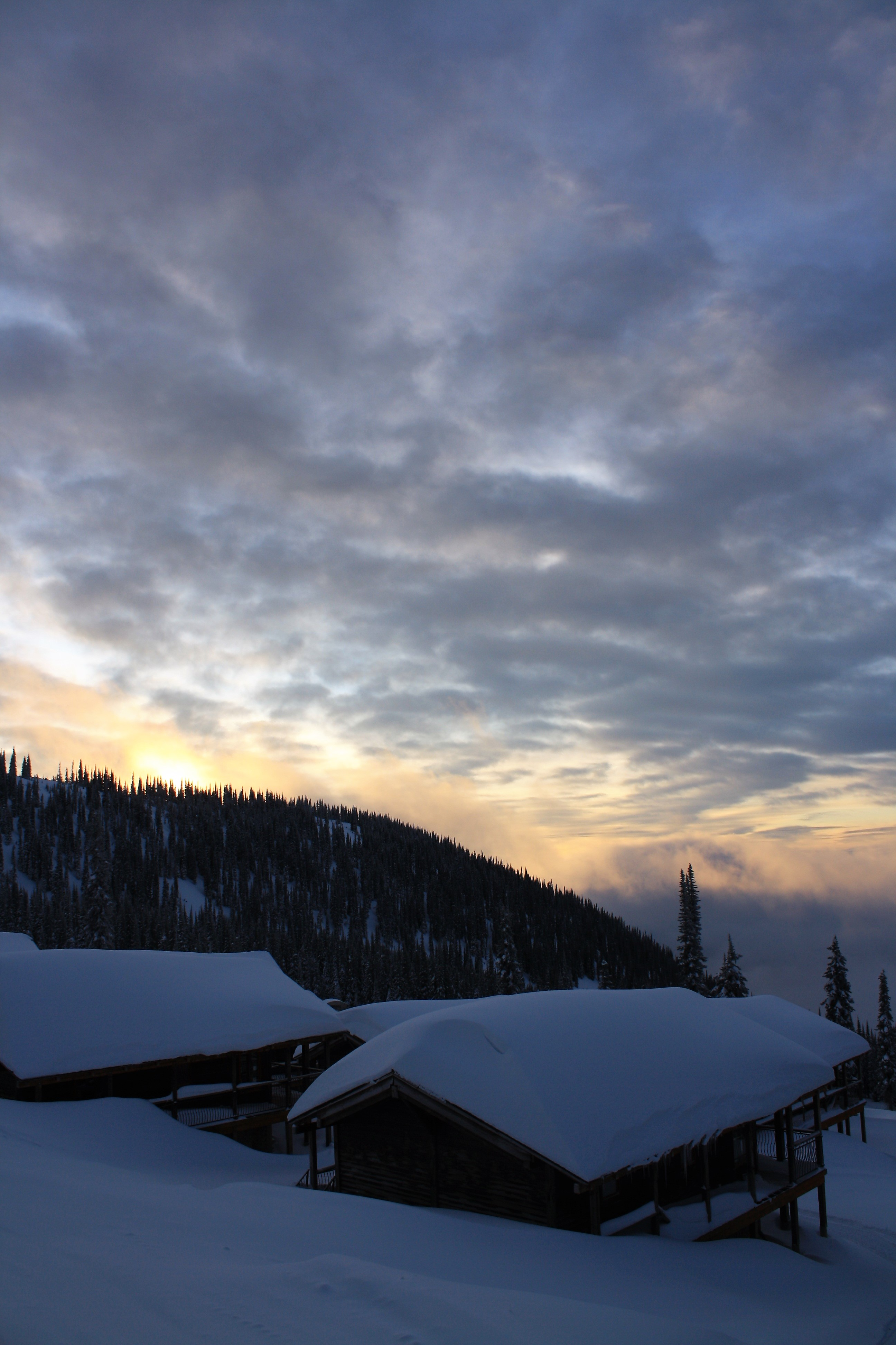 DM_nature_winter_kootenays_1755