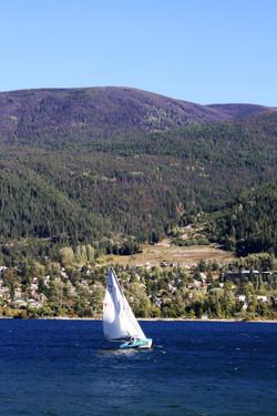DM_leisuresports_sailingboats_7605