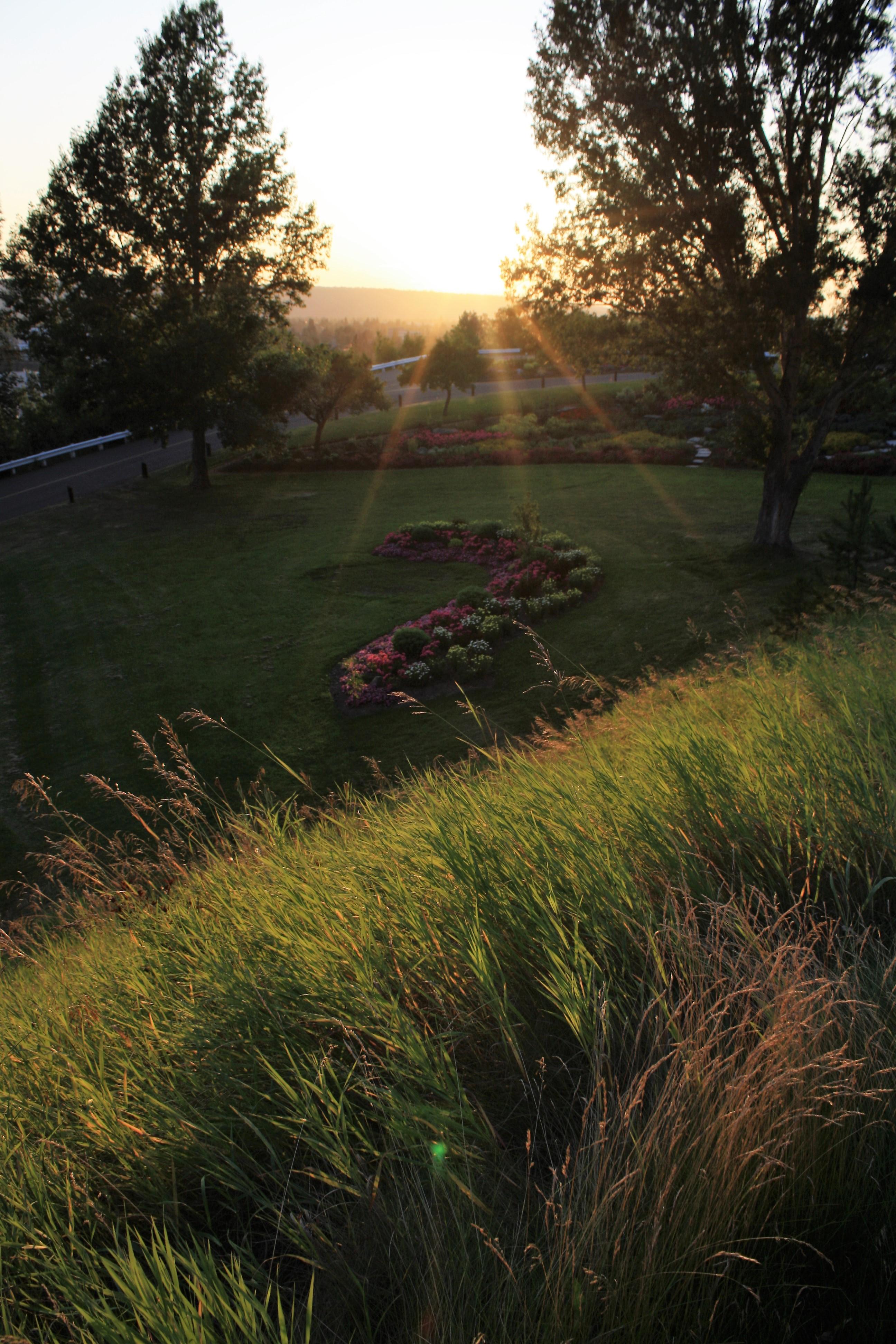 DM_nature_sunsetssunrises_550