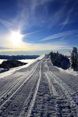 DM_nature_winter_kootenays_1826