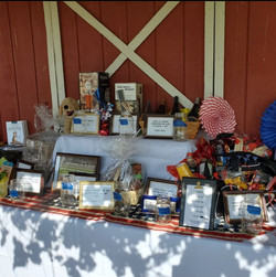 Door prizes and Auction Items