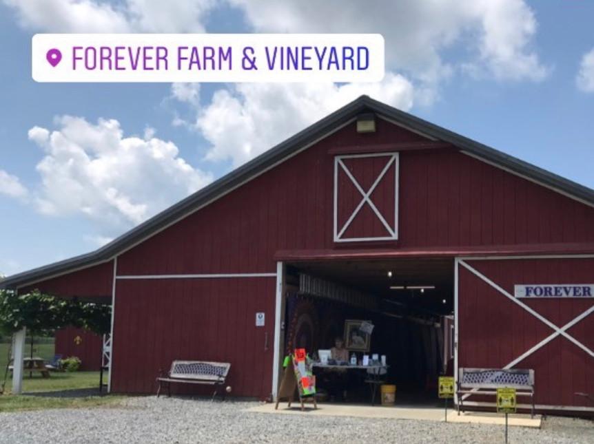 Forever Farm & Vineyard