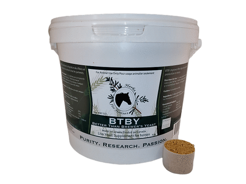 Herbs for Horses - BTBY (Better than Brewer's Yeast)
