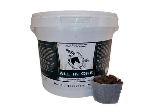 Herbs for Horses - All in One