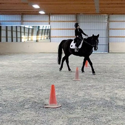 Interested in riding lessons in the Spri