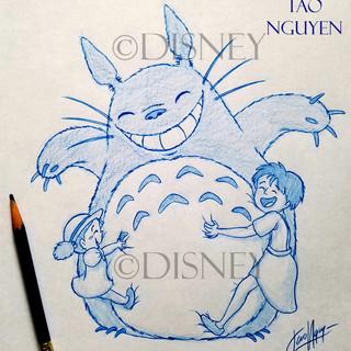 Totoro Hugs