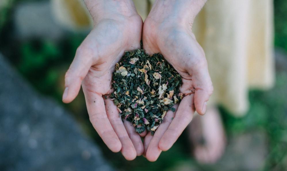 herbs, gratitude, hands, woman standing