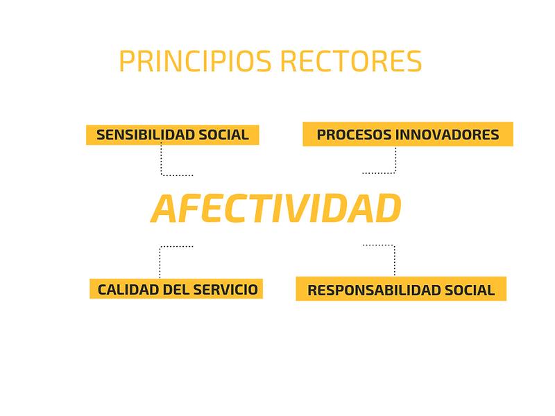 PRINCIPIOS RECTORES (1).png