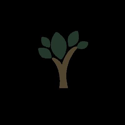 drzewko kolor1.png