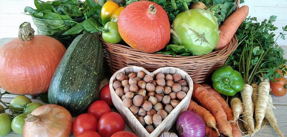 Zestaw ekologicznych warzyw. Zdrowe wrzywa. Warzywa bez chemii. Swieże warzywa.