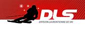 logo-dls.png