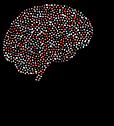 brain-5044699__340.webp