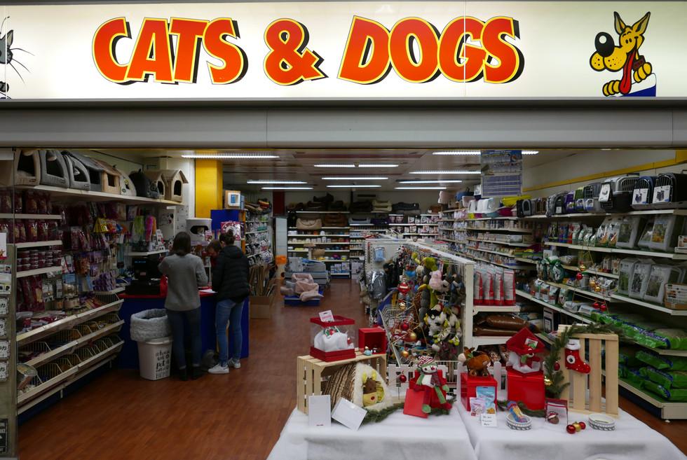 Cats&Dogs Nyon La Combe