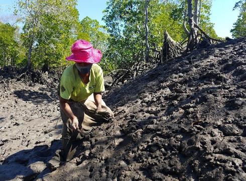 Planting in Madagascar