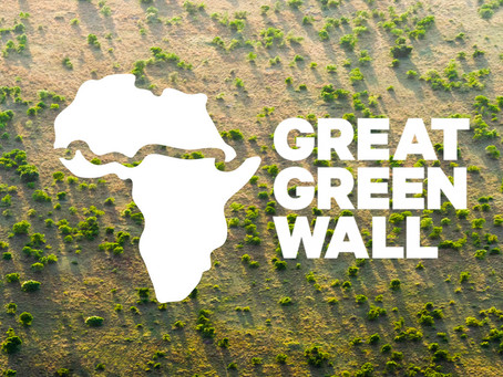 The Great Green Wall