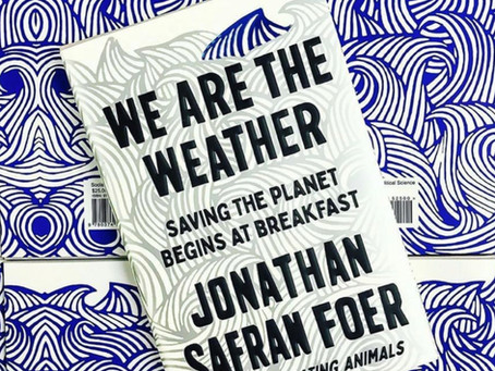 Book of the week: We Are The Weather