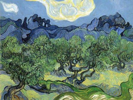 Art & Nature: Vincent van Gogh Olive Trees
