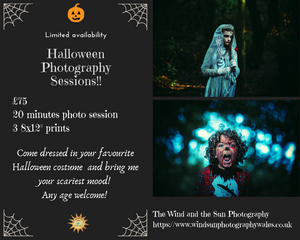 Halloween Photography sessions Penllergaer woods.
