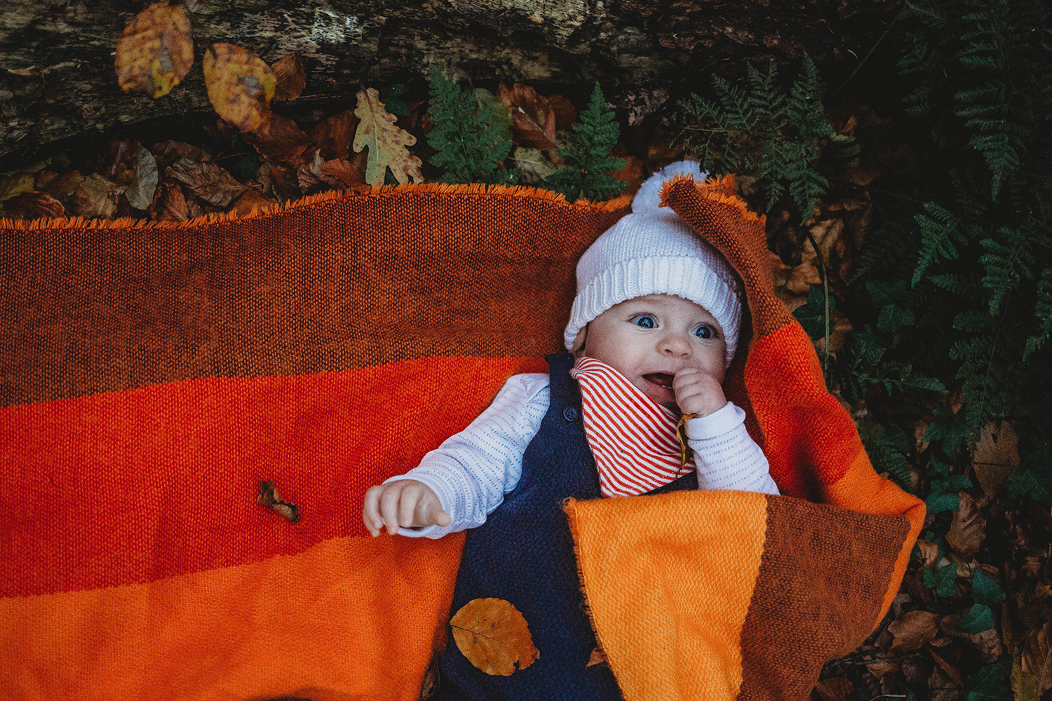 Outdoor photography of a baby in an orange blanket in Penllergar Woods in Swansea
