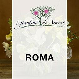 ROMA2.jpg