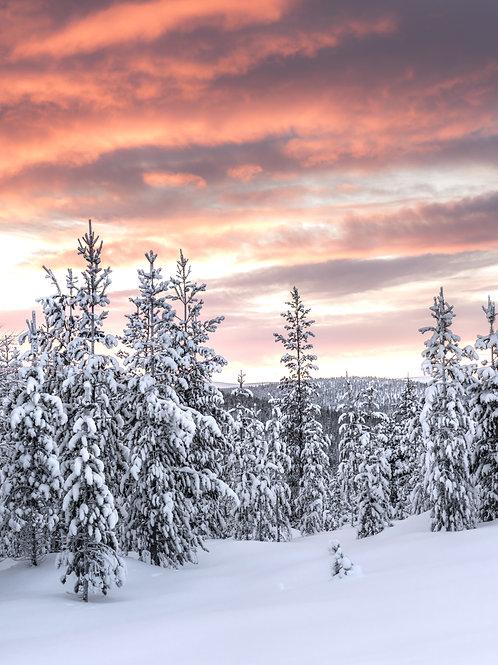 Закат в Лапландии, Финляндия