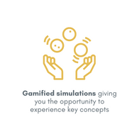 Gamified simulations