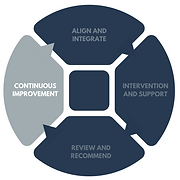 organisational maturity assessment (19).