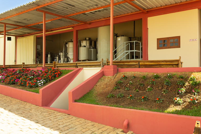 vinhos-micheletto-externo-34.jpg