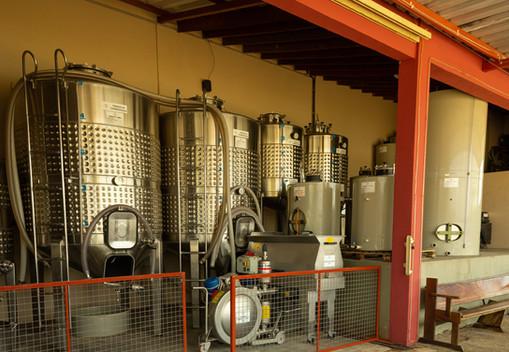 vinhos-micheletto-externo-36.jpg