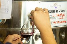 vinhos-micheletto-externo-66.jpg