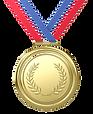 medal_edited.png