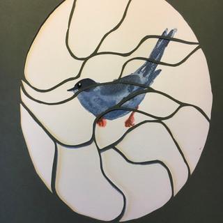 oiseau 5