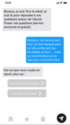 Chatbot alcool - screenshot.PNG