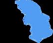 NV logo no text no brain.png