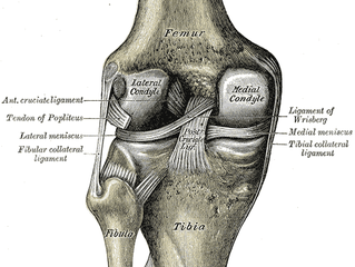 How To Address Knee Pain