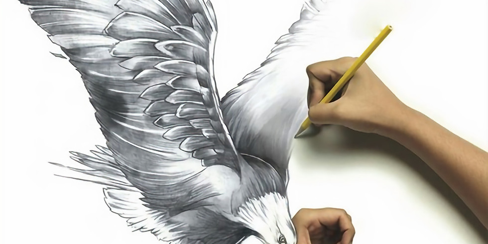 Learn to Sketch Birds – 2