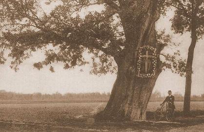 De Onze-Lieve-Hereboom