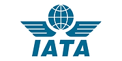 iata-logo-1.max-500x500.png