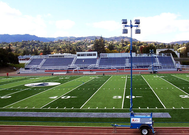 Sports Field Synthetic Turf