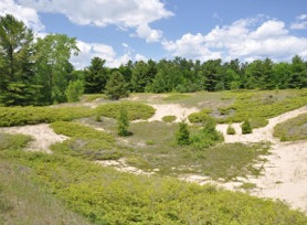 Open house set to initiate amendment process to Kohler-Andrae State Park Master Plan